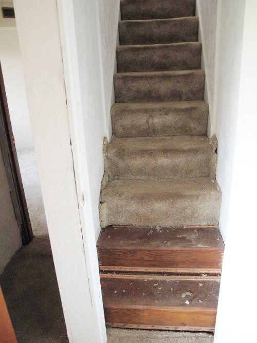 stairway recovery project