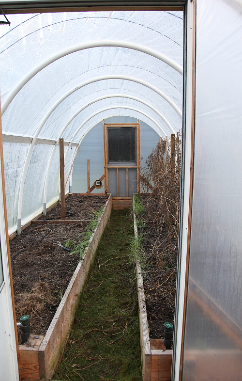 hoophouse_clearing_1
