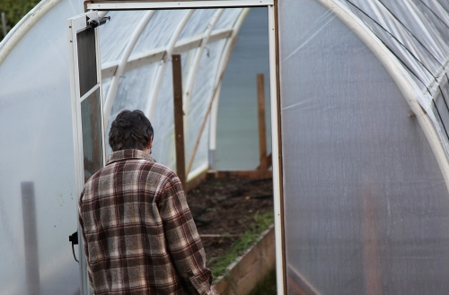 hoophouse_clearing_2