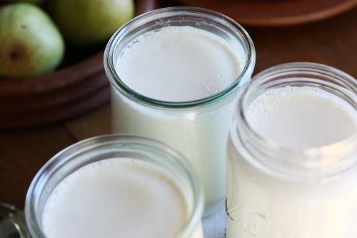 yogurt_7a