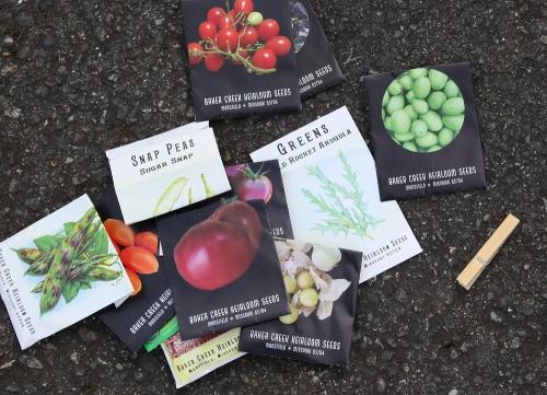 planting_seeds_1