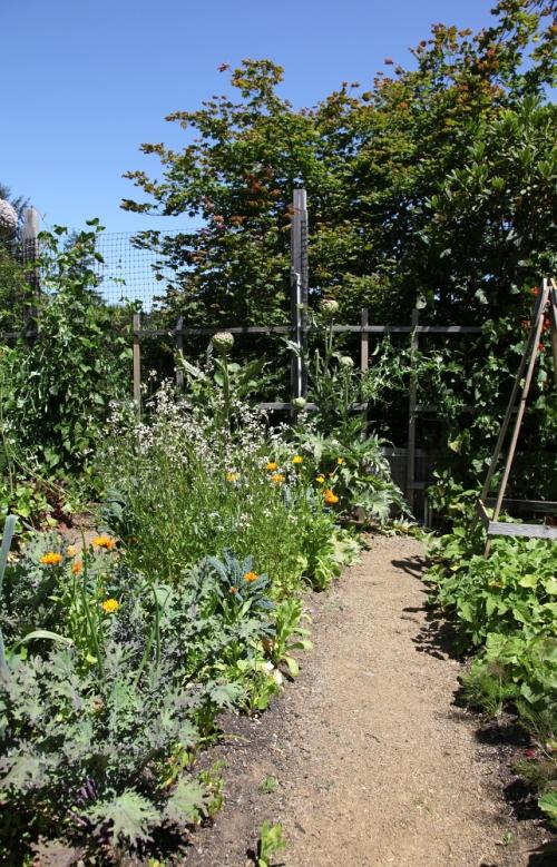 garden_path_july13