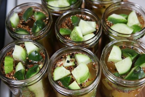 pickles_6