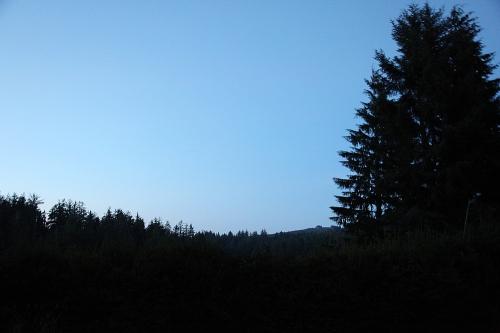stargazing_3
