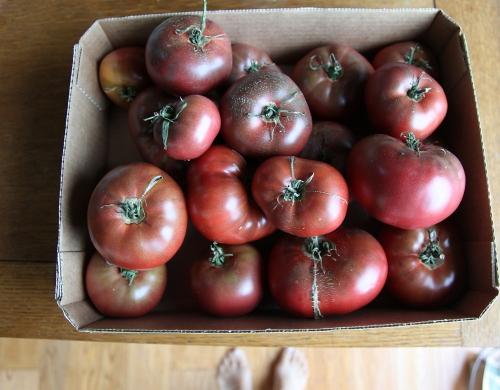 tomatoes_0