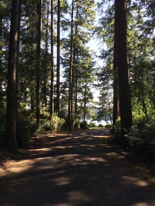 lake_may1_0