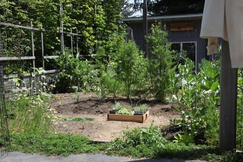 may_planting_0