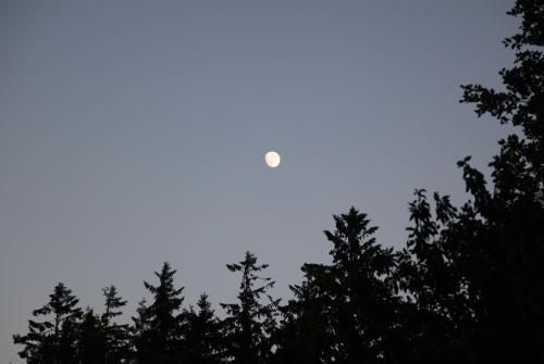 moon_july9