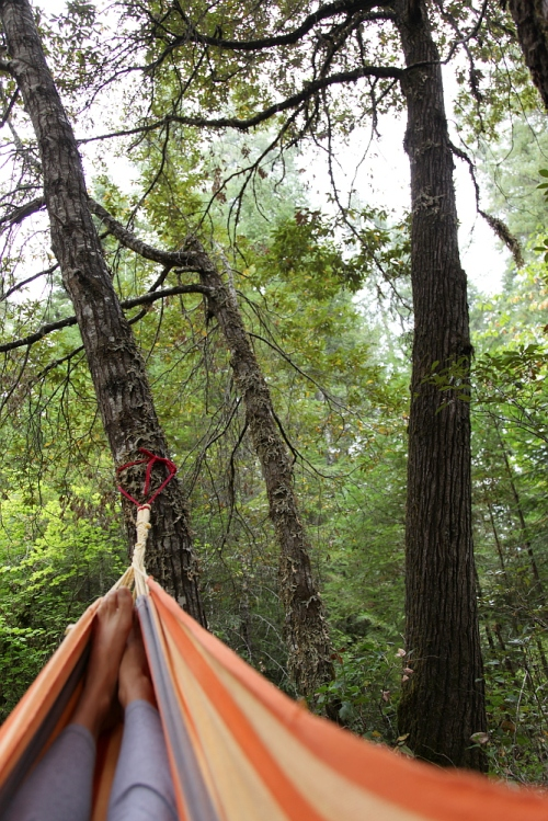 camp_hammock_0