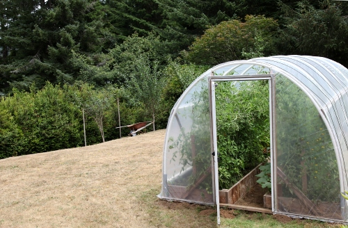 hoophouse_august10_0